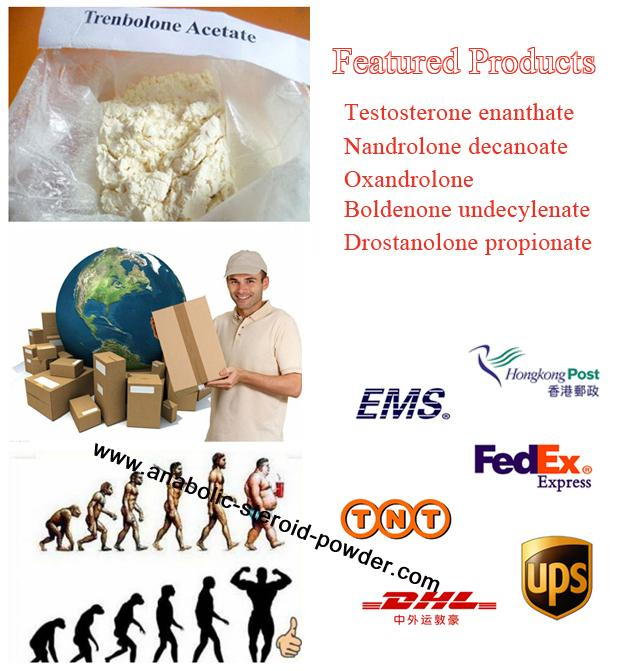 Tabletten-Steroid-Test Enanthate Anti-Altern Testosteron Enanthate CAS 315-37-7